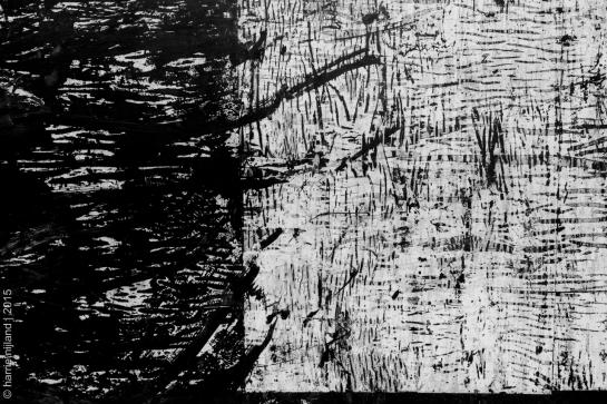 In a Birch-Wood